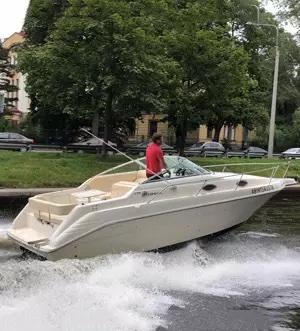 «sea Ray 255» Аренда катера в Мск